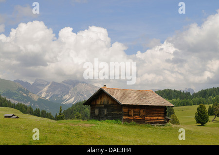 alpine huts on mountain pasture in front of alpine panorama, Italy - Stock Photo