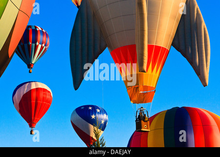 Multiple colorful hot air balloons against clear blue sky at sunrise at Spirit of Boise Balloon Classic in 2011 - Stock Photo