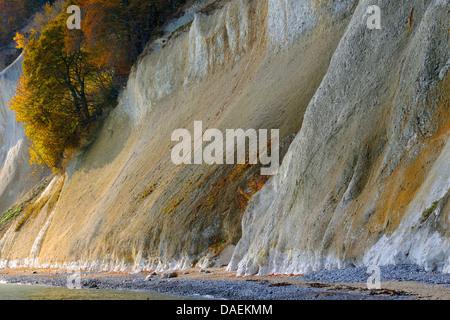 chalk cliffs of Ruegen, Germany, Mecklenburg Vorpommern, NLP Jasmund - Stock Photo