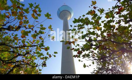 Rheinturm, communication tower of Dusseldorf, Germany, North Rhine-Westphalia, Duesseldorf - Stock Photo