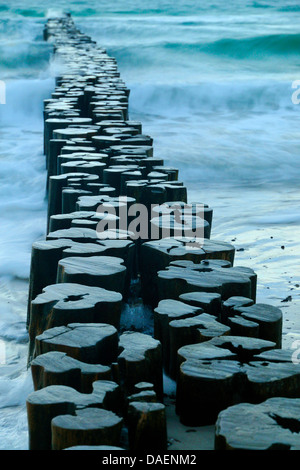 the waters of the Baltic Sea flowing around groyne poles, Germany, Mecklenburg-Western Pomerania - Stock Photo