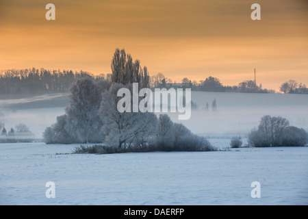 snow landscape with ground fog in morning light, Germany, Bavaria, Isental