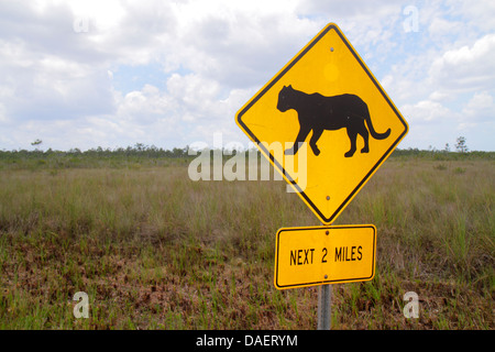 Miami Florida City Everglades Florida National Park Main Park Road sign warning panther crossing freshwater marl - Stock Photo