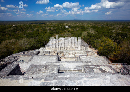 America, Mexico, Campeche State, Calakmul, archaeological mayan site ruins, - Stock Photo