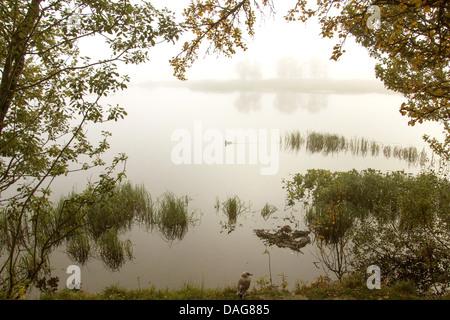 morning mist over lake Prestvannet, Norway, Troms, Tromsoe, Prestvannet - Stock Photo