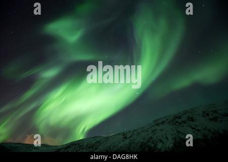 aurora whirl in front of the starry sky over snow-covered mountain slopes, Norway, Troms, Kvaloea, Kattfjordeidet - Stock Photo