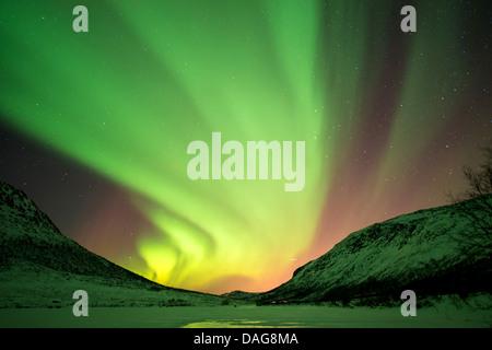 aurora curtain in front of the starry sky over snow-covered valley, Norway, Troms, Kvaloea, Kattfjordeidet - Stock Photo