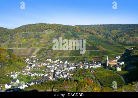 vine yards in the Ahr valley, view onto Mayschoss in autumn, Germany, Rheiland-Pfalz, Ahrgebirge - Stock Photo