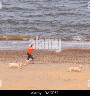 Southwold , Suffolk , Uk , evening of 12th July 2013 . A young girl having fun exercising her dogs on Southwold - Stock Photo