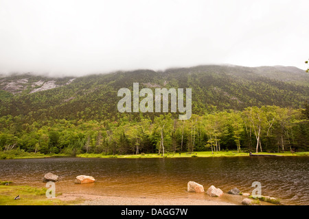 The Saco River runs in the Crawford Notch State Park in New Hampshire Wednesday - Stock Photo