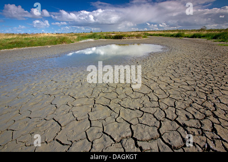 Landscape with blue sky and muddy pools of water on for Crack belgique