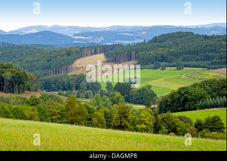 panoramic view to Sauerland towards Asten area, Germany, North Rhine-Westphalia, Sauerland, Cobbenrode - Stock Photo