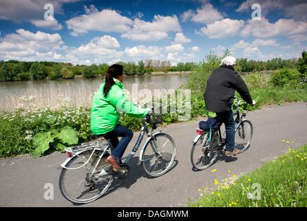 bikers on dike along river Scheldt, Belgium, Scheldevallei - Stock Photo