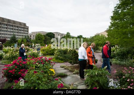 United States Botanic Garden in Washington, DC Stock Photo, Royalty ...