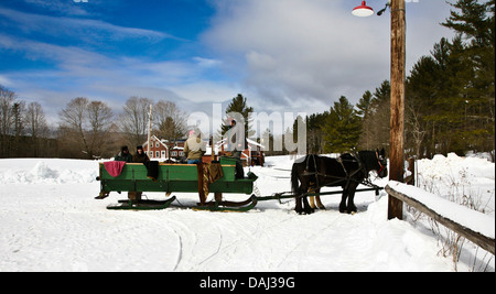 Getting ready for a horse drawn Christmas sleigh ride near Montgomery, Vermont, USA, United States, New England, - Stock Photo
