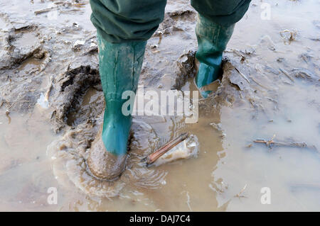The farmer Dirk Wegner stands in wellington boots in a flooded area of a tilled field in   Kuestrin-Kietz, Germany, - Stock Photo