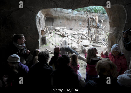 Visitors stand in front of the gorilla enclosure in Pongoland at the Zoo in Leipzig, Germany, 31 March 2011. Pongoland - Stock Photo