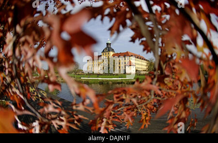 (dpa-file) - A file picture dated 21 October 2009 shows the Moritzburg Castle surrounded by colourful leaves in - Stock Photo