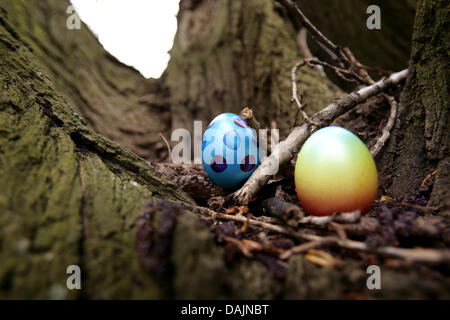 (dpa-file)- A file picture dated 08 April 2009 shows two colourful Easter eggs lying on a tree between two branches - Stock Photo