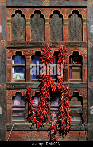 Chili peppers on a window - Stock Photo