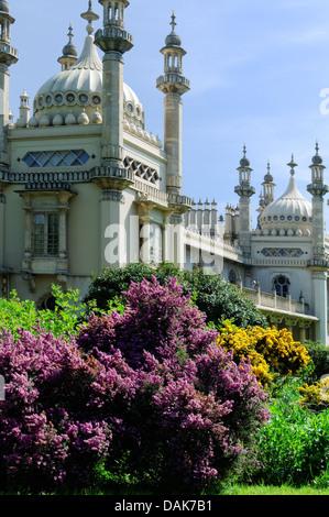 Royal Pavillion Gardens, Brighton, East Sussex, England, UK - Stock Photo