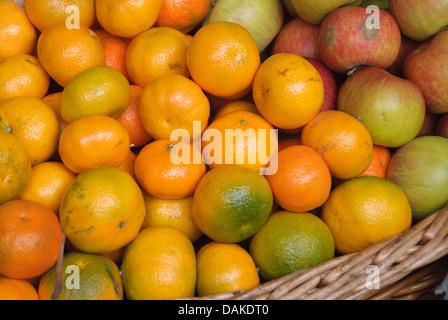 mandarin, tangerine (Citrus reticulata), basket with mandarines - Stock Photo