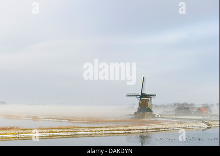 wind mill in the morning fog, Netherlands, Texel - Stock Photo