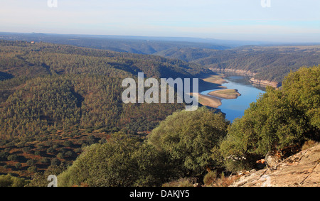 Rio Tajo with low water level, Spain, Extremadura, Monfrague National Park - Stock Photo