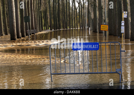 flooded riverbanks of Durme, Belgium, Durme - Stock Photo