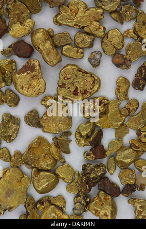 Natural California (USA) Placer Gold Nuggets - As Found in Stream - Stock Photo