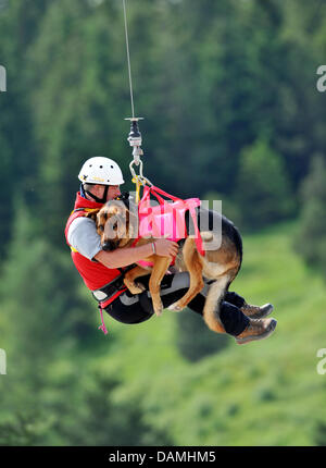 The avalanche search dogs team of the mountain rescue service Bavaria practise flying with their search dogs in - Stock Photo
