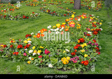 The beautiful flowers of Merano center town,South Tyrol - Stock Photo
