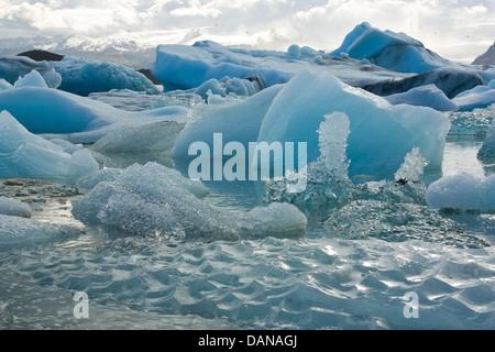 Melting icebergs calved off from a glacier in Iceland - Stock Photo