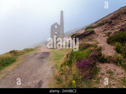 The ruins of Towanroath pumping engine house rising out of the mist at Wheal Coates at St. Agnes in Cornwall - Stock Photo