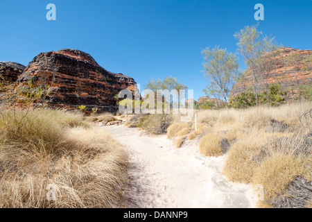 Hiking from Piccaninny Parking to Cathedral Gorge, passing the sandstone domes of Purnululu (Bungle-Bungles), Kimberley - Stock Photo