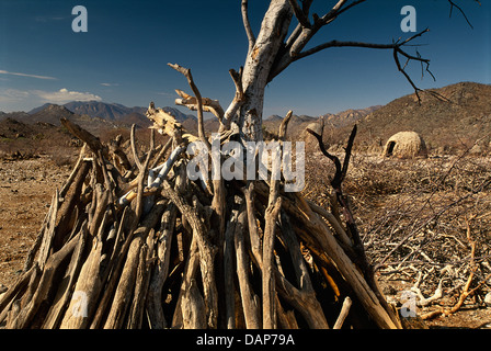 Stacked branches of Himba hut in Angola. - Stock Photo