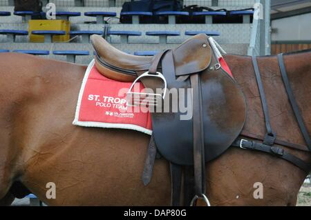 A handout file dated 30 July 2011 shows a horse standing near the event Saint-Tropez-Polo-Trophy 2011 in Saint Tropez, - Stock Photo