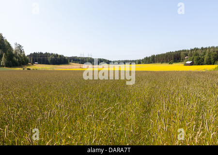 Beautiful countryside view in Finland - Stock Photo