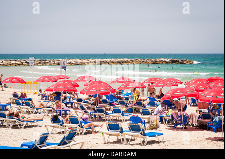 Israel Tel Aviv sand beach scene parasols umbrellas sonnenschirm sea lounger loungers people sunbathers swimming - Stock Photo