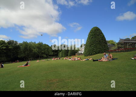 Botanic Gardens, Glasgow, Scotland, UK. 18th July 2013. People enjoying the continued great weather in various ways. - Stock Photo