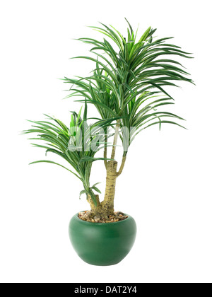 Plastic plant in pot, cut out on white background - Stock Photo