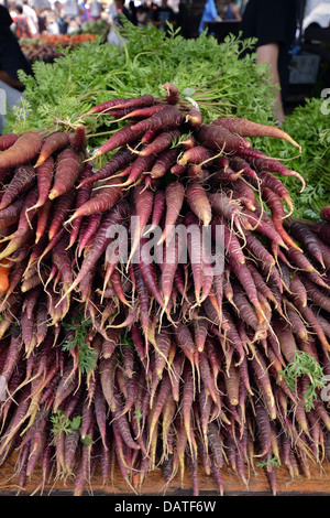 Purple carrots for sale at the Union Square green market in Manhattan, New York City