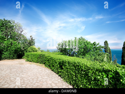 Green summer park in Vorontsov's palace - Stock Photo