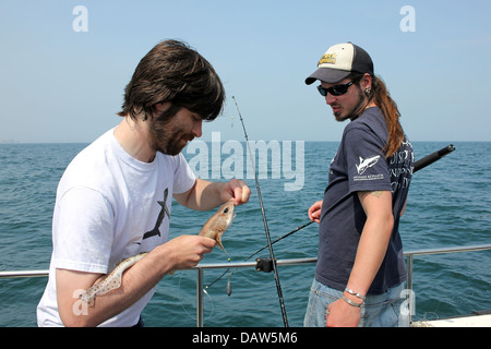 Marine Biologists Removing Hook From Lesser Spotted Dogfish - Stock Photo