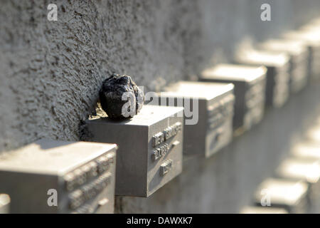 Stones rest on name boards at the memorial for murdered Jews from Frankfurt at the outer wall of the old Jewish - Stock Photo