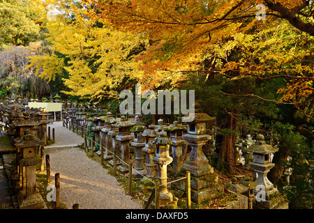 Fall foliage at Kasuga-taisha shrine in Nara - Stock Photo