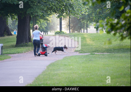 mother walking small child in pushchair on path in Kensington gardens London with medium sized black tan and white - Stock Photo