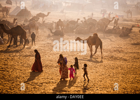 Scene at Pushkar Camel Fair, Pushkar, Ajmer, Rajasthan, India