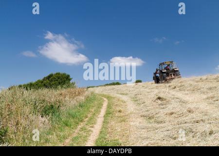 Make hay while the sun shines - Stock Photo