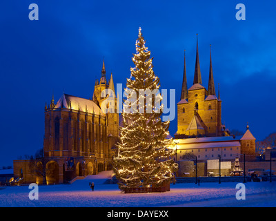 Domplatz with Christmas tree, St Mary's cathedral and St Severus church, Erfurt, Thuringia, Germany - Stock Photo